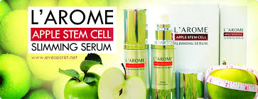 LAROME SLIMMING LOTION